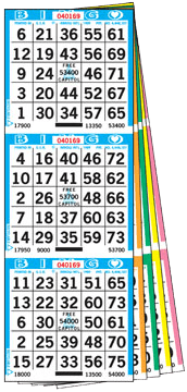 3on Bingo Books – 600 Books