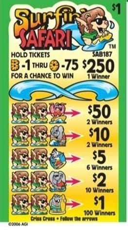 NEW- Surfin Safari - Event Ticket