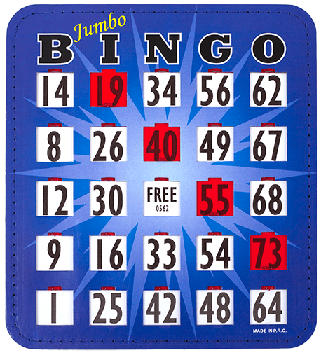 10 Pack EZ Read Large Print Bingo Slide Cards HD