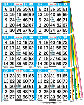 6on Bingo Books – 300 Books