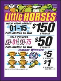 Little Horses Bingo Event Ticket 308ct
