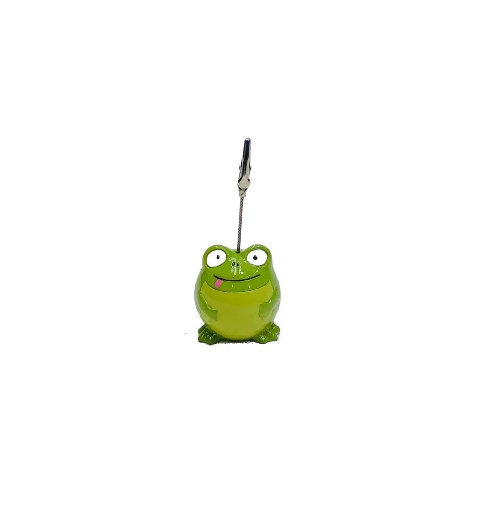 NEW- Happy Frog Ticket Holder